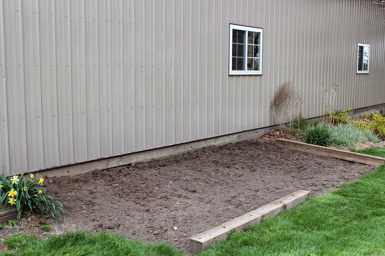 IMG 4525 - The Garden