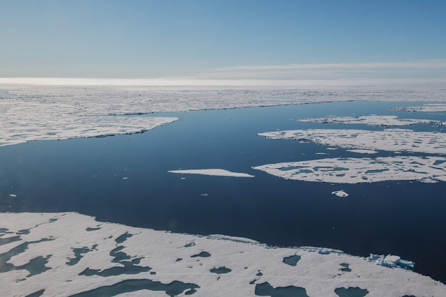 The Transpolar Drift is faltering: Sea ice is now melting before it can leave the nursery