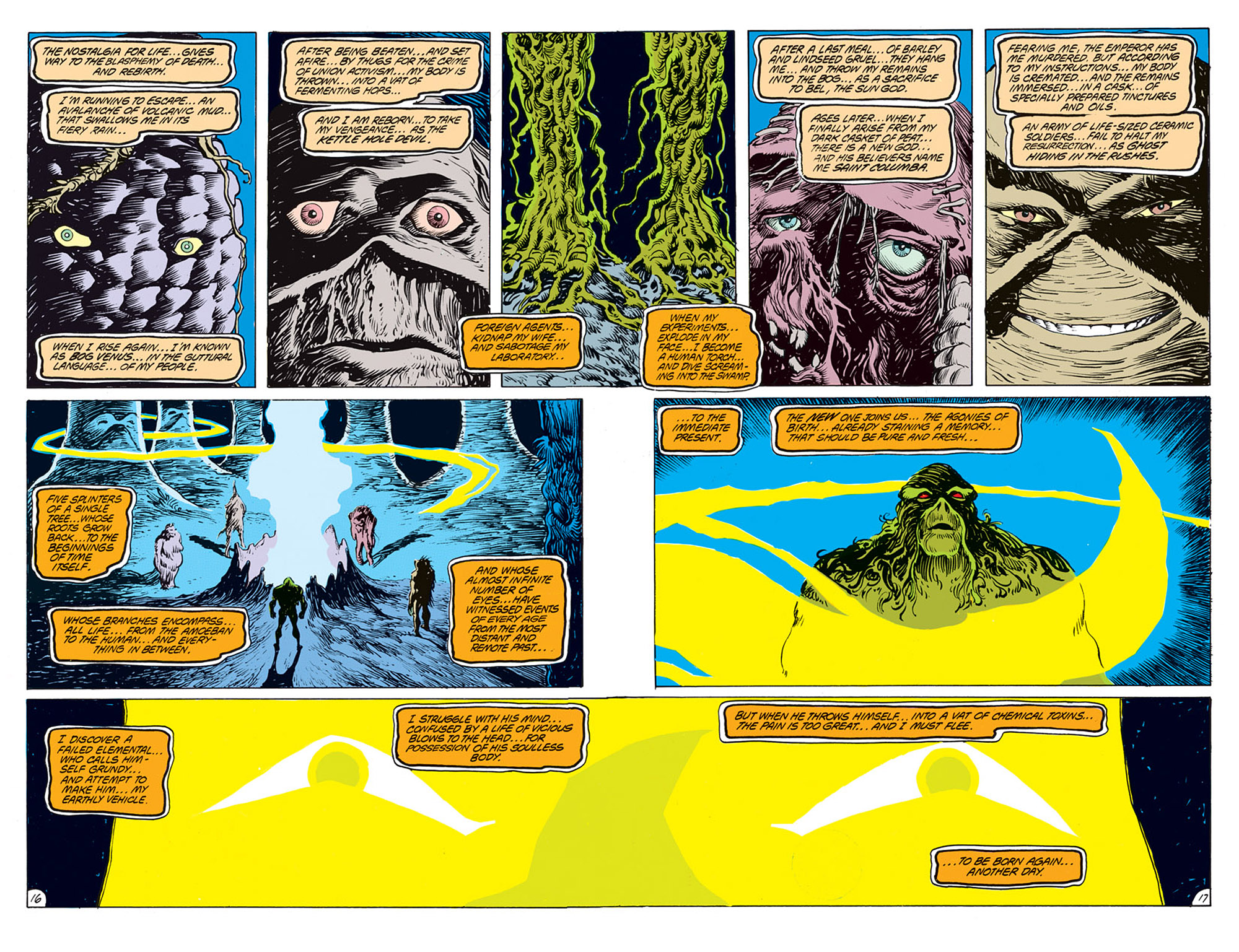 Swamp Thing (1982) Issue #68 #76 - English 14