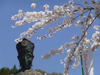 湯田中温泉の桜の名所 世界平和観音 アップ