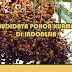 Cara Budidaya Tanaman Kurma Dari Biji Hingga Berbuah Di Indonesia