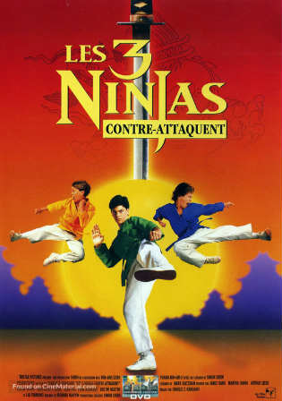 3 Ninjas 1992 WEB-DL 300MB Hindi Dual Audio 480p Watch online Full Movie Download bolly4u