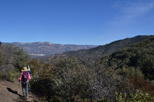 Howard Creek Trail