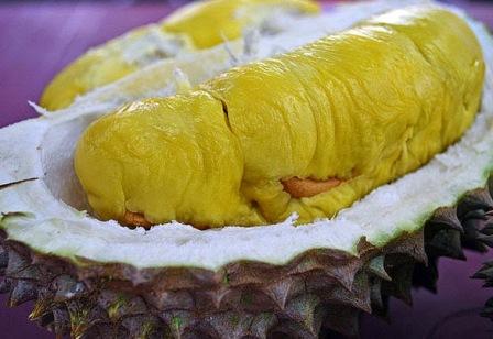 12 Khasiat Kulit Durian Untuk Kesehatan Dan Kehidupan Sehari-hari