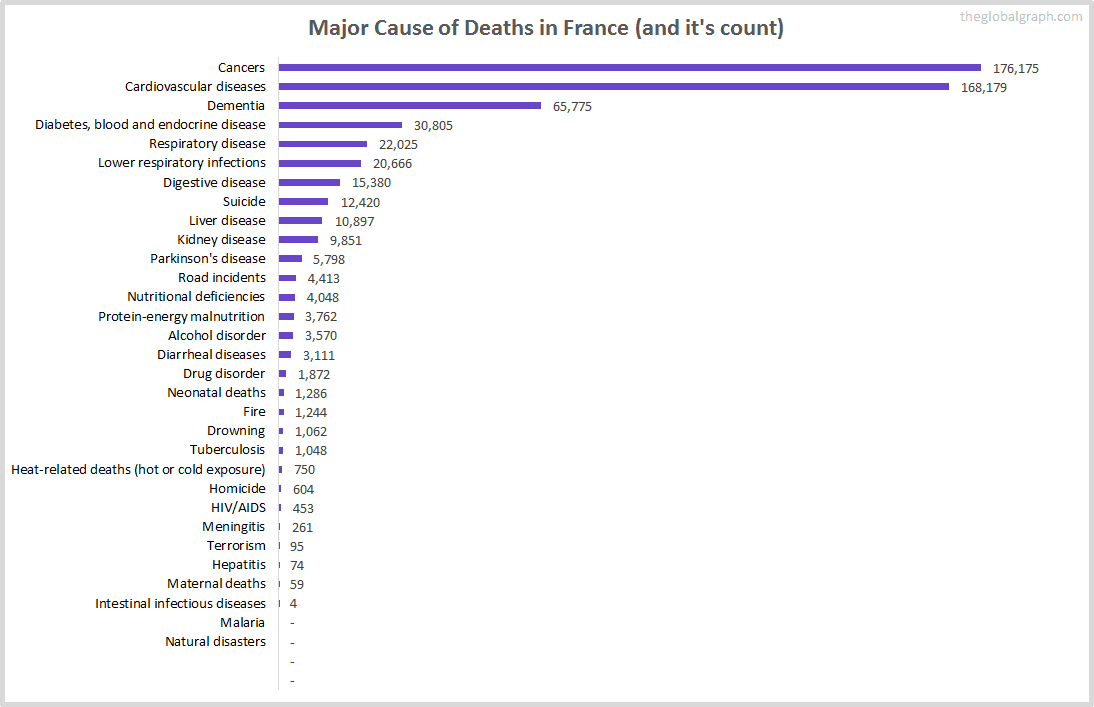 Major Cause of Deaths in France (and it's count)