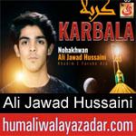 https://www.humaliwalyazadar.com/2018/09/ali-jawad-hussaini-nohay-2019.html