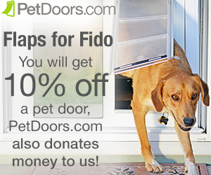 Speciality pet doors for dogs and cats
