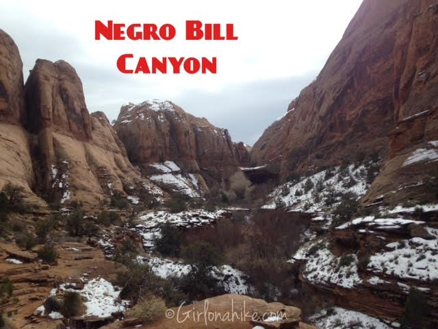 Negro Bill Canyon Trail Guide and Maps, Hiking with Dogs in Utah, Hiking Moab, Morning Glory Natural Bridge