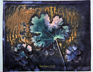 Wet cyanotype, Sue Reno, Image 32