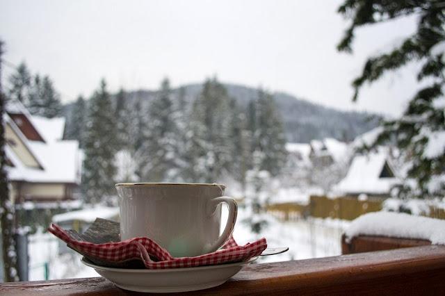 filiżanka herbaty i piękny widok