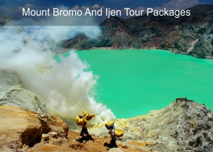 Mount Bromo and Ijen Tour Packages