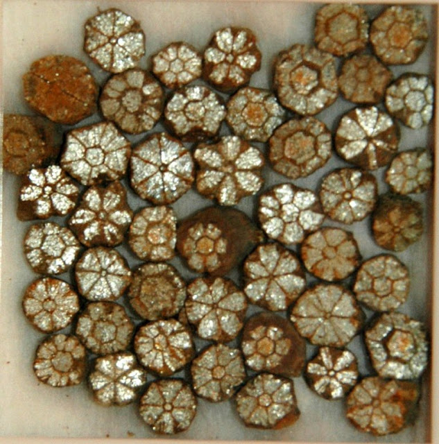 Cherry Blossom Stones Is a Natural Wonder