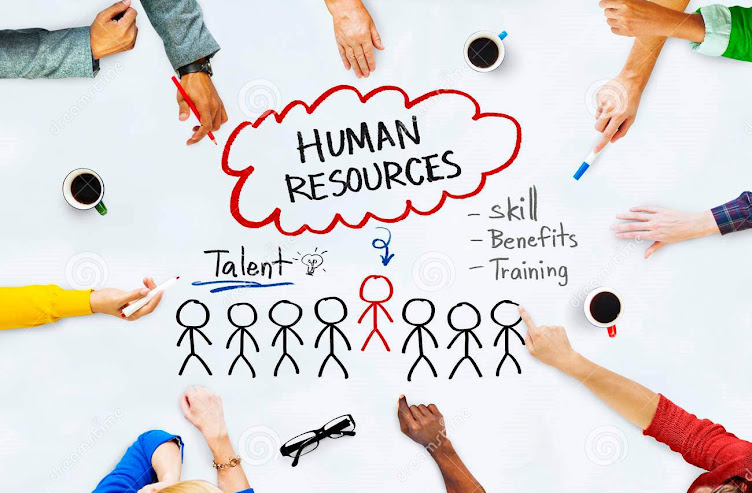 HUMAN RESOURCES IBS