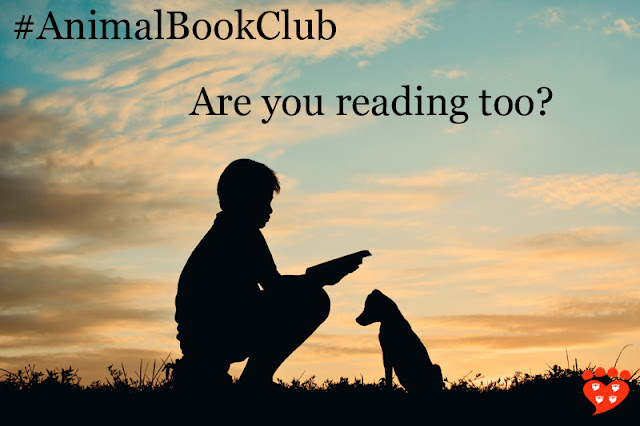 A boy reading a book to his dog, to illustrate the book choice for February: The Animals Among Us