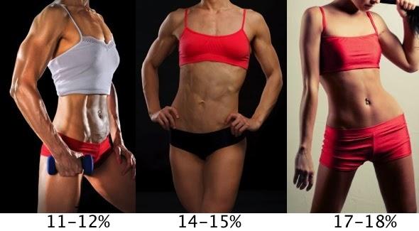 Female percent body fat