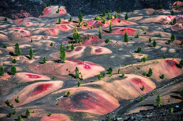 Painted Dunes