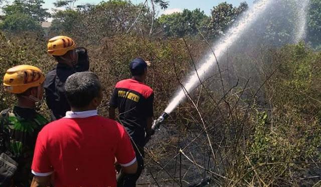 Petugas saat memadamkan api