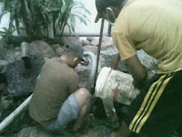 http://sedotwc-malang.blogspot.com