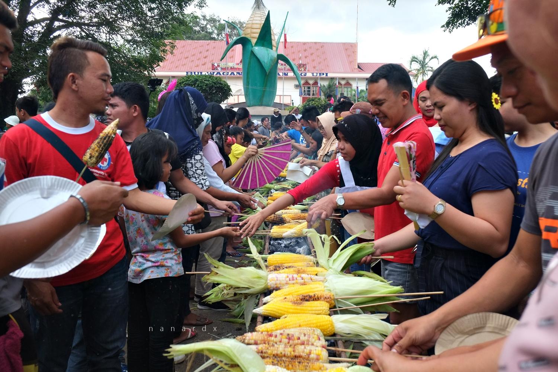Maisan Na! at Meguyaya Festival of Upi, Maguindanao