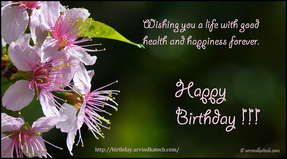 Good Health Happy Birthday Happiness Card Of Wild Cherry Flowers