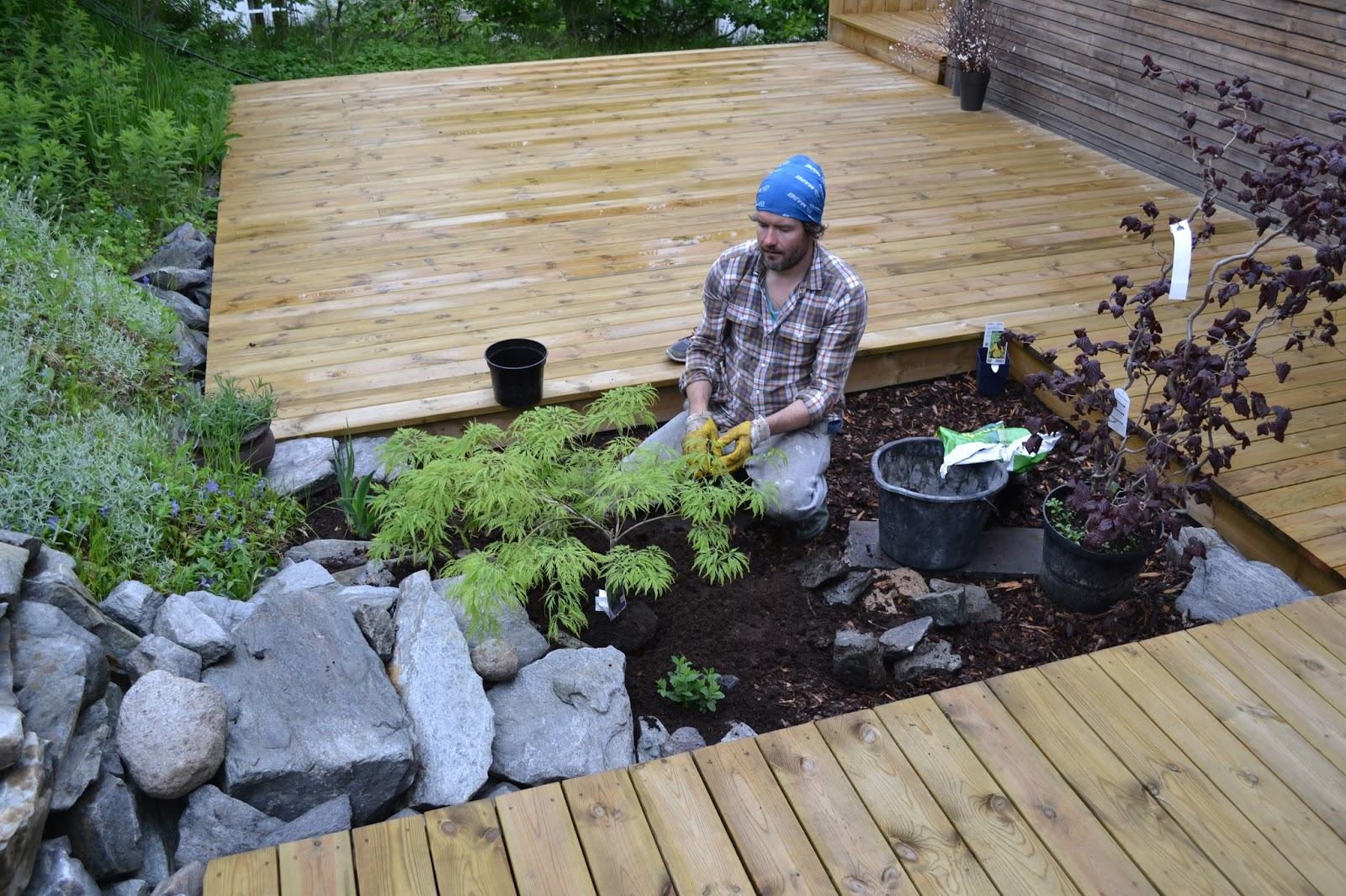 Just An Essex Lad Six Norwegian Garden Centres Or Seven In Four Days