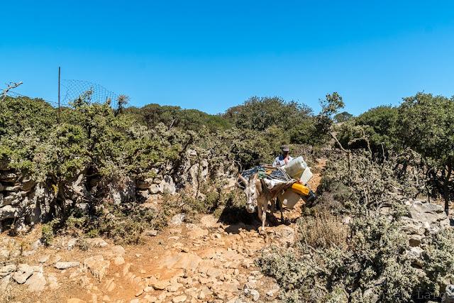 Agia Varvara-Amorgos-Cyclades