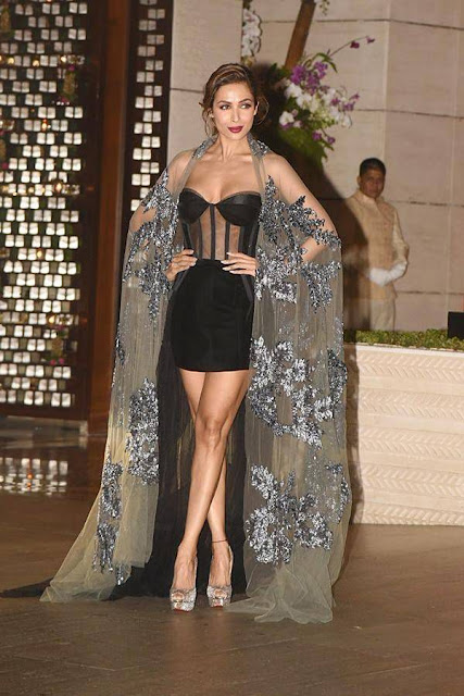 Malaika Arora At Ambani Bash