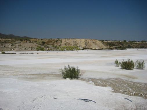 La reutilización de lodos de mármol permite regenerar suelos contaminados 8850c66070f