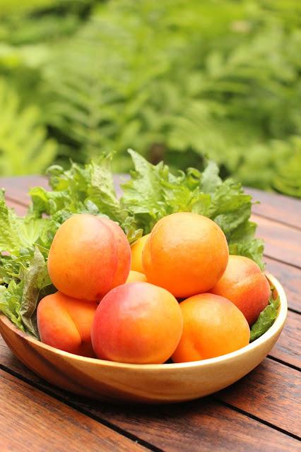 shrub maison abricot et perilla