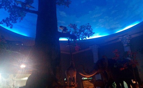 Ruangan Museum Satwa