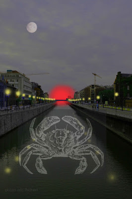 canal de Bruxelles, crabe mutant,