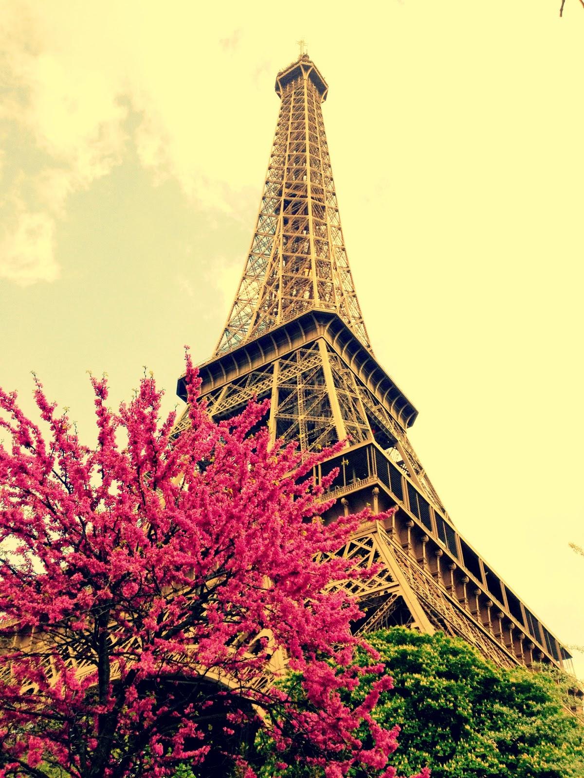 A Dream Away.....: Pretty, pretty Paris! and my first days ...