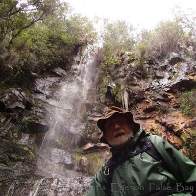 Kirstenbosch Contour Path