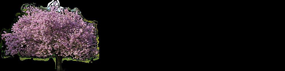 Atribuição DE Bauru