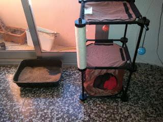 arenero-rascador-gatos-casita