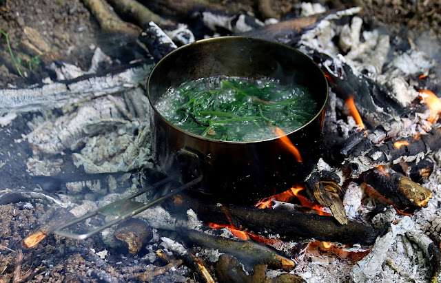 cleavers boiling