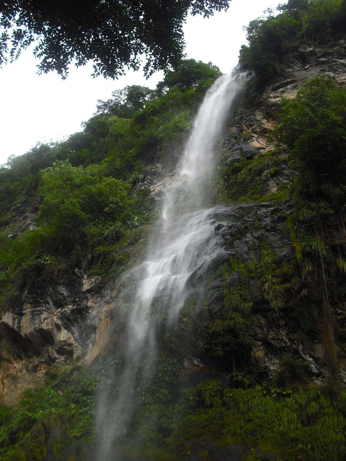 Maracas Waterfall, Trinidad   Trinidad & Tobago ...  Trinidad And Tobago Maracas Falls
