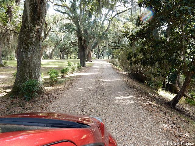 Where to stay Louisiana Roadtrip Plantation B&B Adventures of a London Kiwi