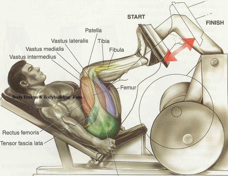 The Best Leg Exercises for Big Wheels