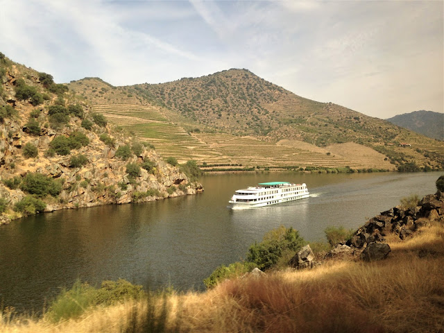 passeio comboio pelo Douro