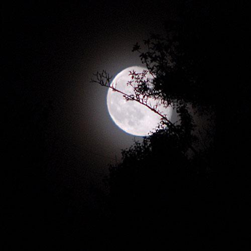 http://2.bp.blogspot.com/-B1JxtH2Pb-4/TtieYlIB8OI/AAAAAAAAABw/piC5skajdv8/s1600/nuit.jpg