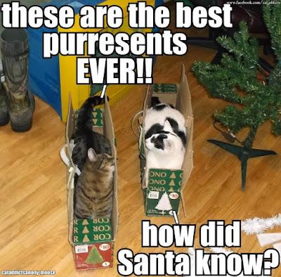 Life on Delmarva: Holiday Humor | 25 Christmas Greetings ...