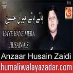 https://www.humaliwalyazadar.com/2018/09/syed-anzaar-husain-zaidi-nohay-2019.html