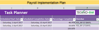 Payroll Implementation Plan