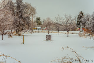 Photograph of the backyard view we have out our window during winter: picturesque but not photogenic