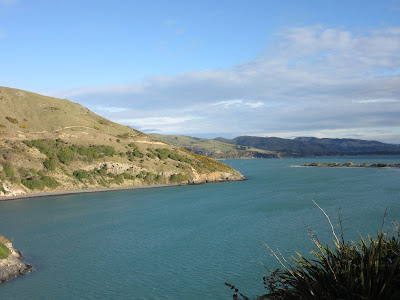Vistas desde Harrington Point. Península de Otago, en Nueva Zelanda