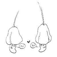 cashew cuties