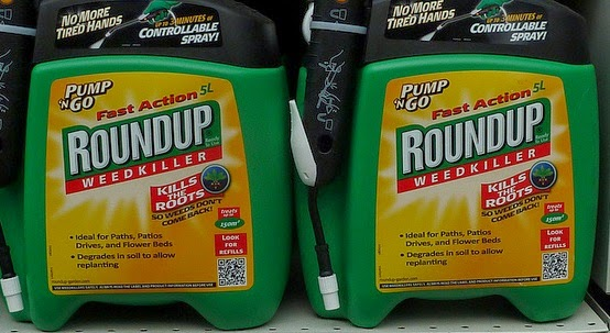 Image of two containers of Roundup herbicide