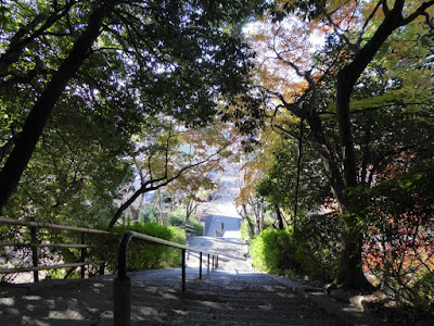 野崎観音・慈眼寺(じげんじ)の階段