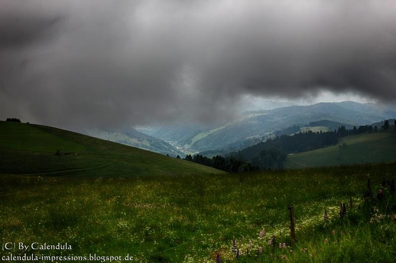 """Regenwolken mit """"Lichtblick"""" am Schauinsland"""